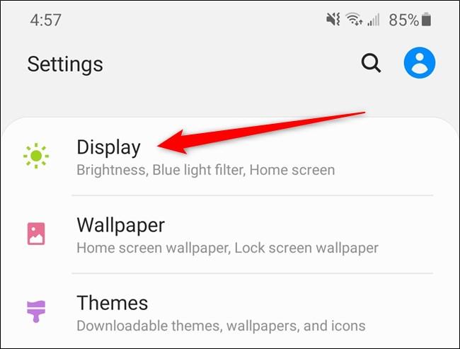 Samsung Galaxy S20 Select the Display Option