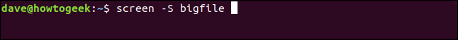 "The ""screen -S bigfile"" command in a terminal window."