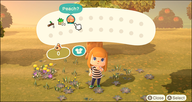 Animal Crossing New Horizons Fruit
