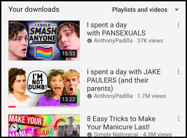 Biblioteca de descargas de YouTube
