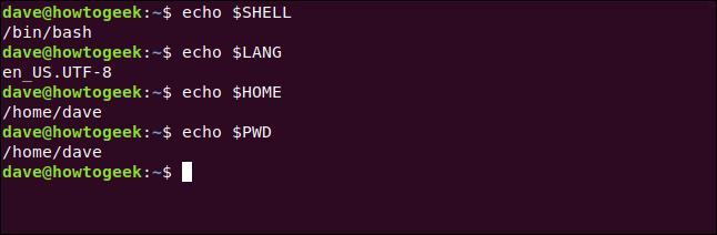 echo $SHELL in a terminal window