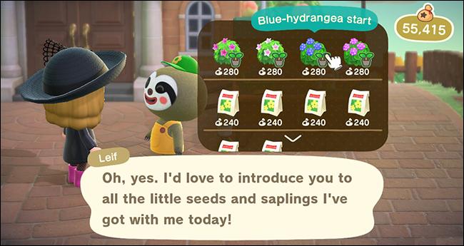 Leif's Garden Shop Selection