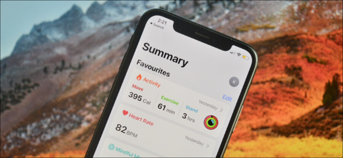 Showing Health Summary Favorites on iPhone