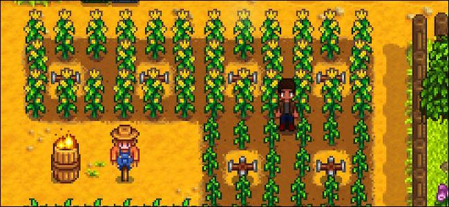 Stardew Valley Sprinkler Farming