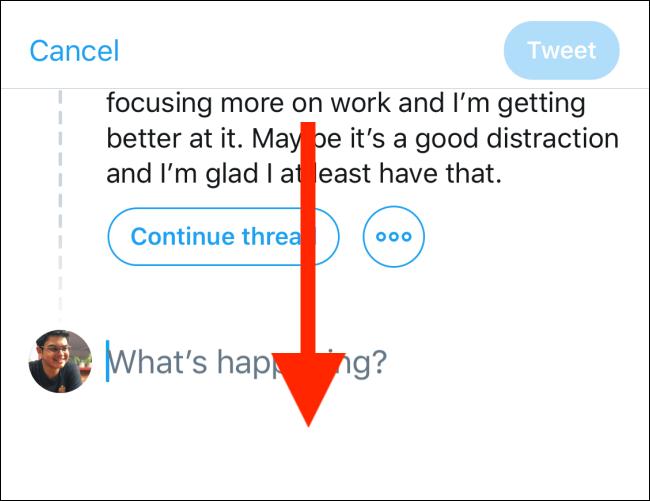Swipe down in Tweet compose window