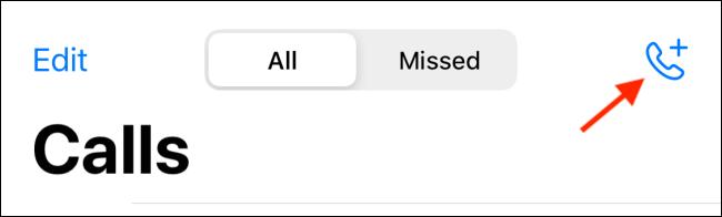 """Toque el botón Llamar en la sección """"Llamadas"""" de la aplicación WhatsApp para iPhone."""