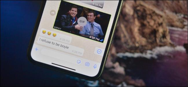 WhatsApp showing GIF
