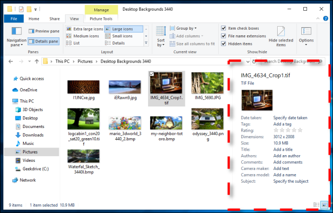 Example of Details Pane in Windows 10 File Explorer