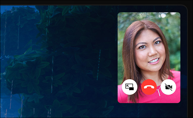 FaceTime Picture in Picture controls on iPad