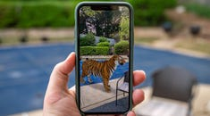 Become a Tiger King with These 3D Animals and Objects on Google