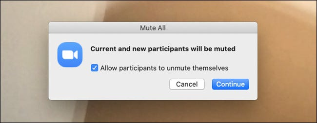 Warning dialog that all participants will be muted in Zoom