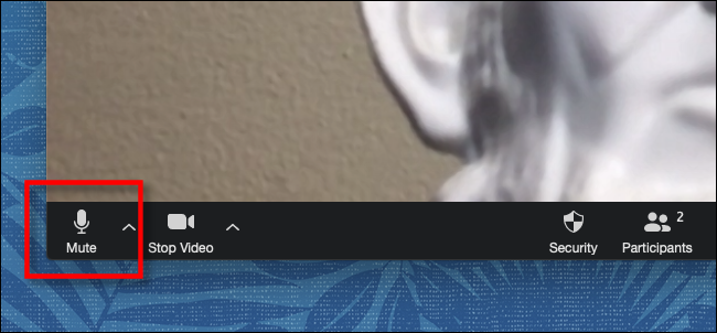 Click or tap Mute on the toolbar in Zoom
