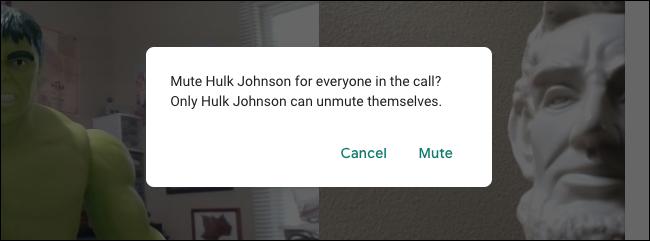 Google Meet Mute Warning