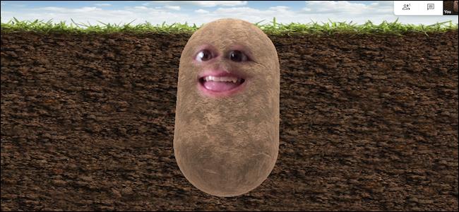 Potato Filter