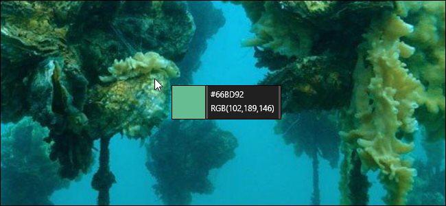 PowerToys Color Picker over a Bing desktop background.