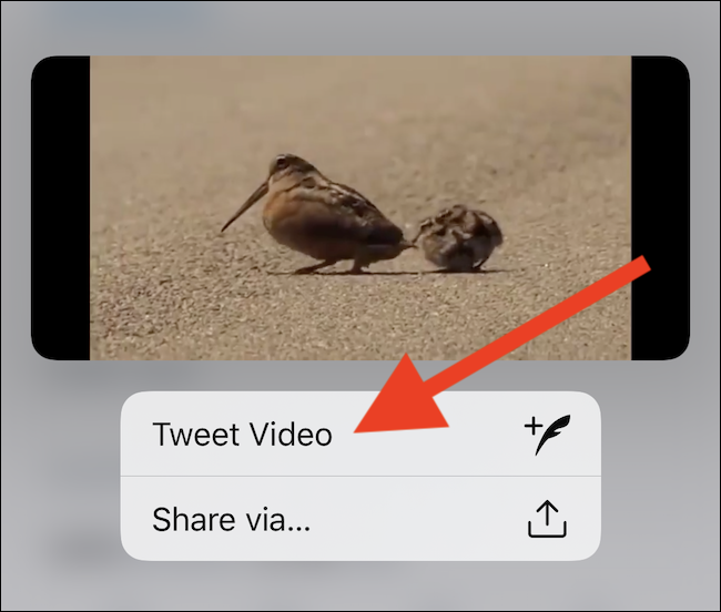 """Select the """"Tweet Video"""" button"""