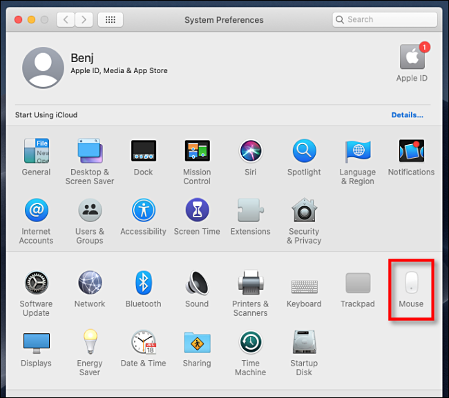Open System Preferences and Click Mouse