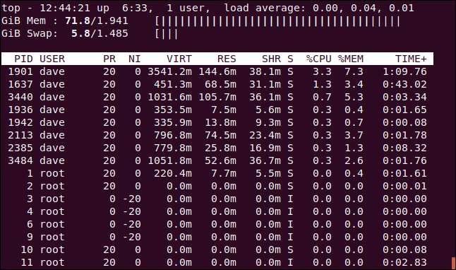 top showing ASCII graphs for the memory statistics, in a terminal window.