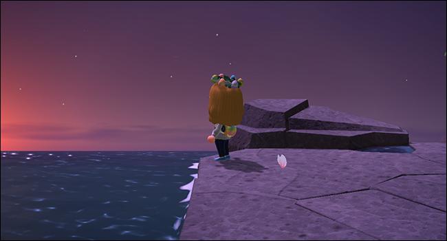 Animal Crossing_sunsetgraphics