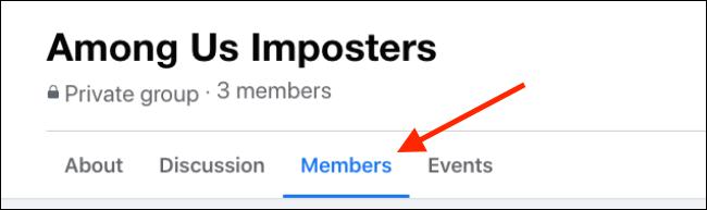 Vaya a la pestaña Miembros en el Grupo de Facebook