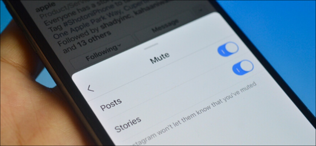 Instagram user muting posts and stories of someone