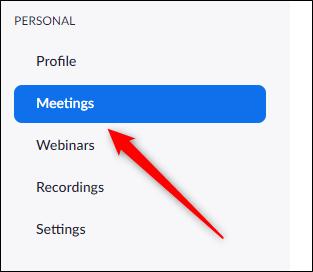 Meetings tab in left-hand pane
