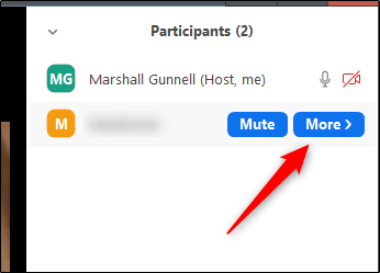 More button near participant name