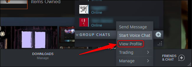 Steam View Profile