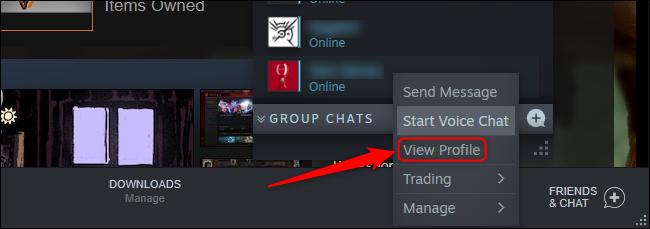 Steam View Profile