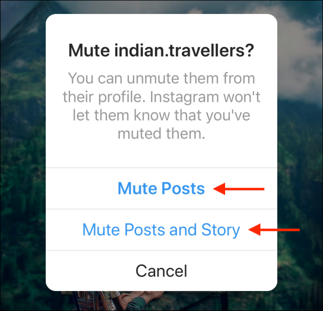 Tap on Mute Posts or Mute Posts and Story