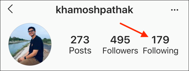 Tap on the Following Button on Instagram profile