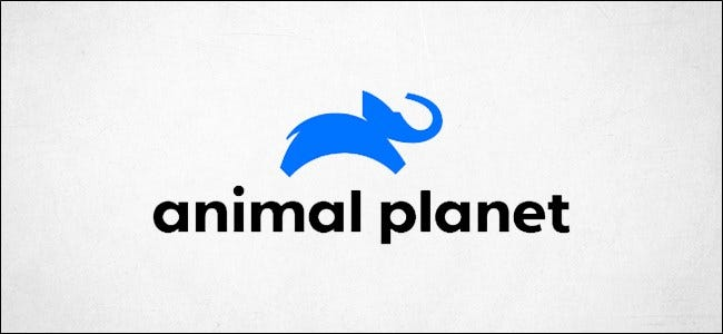 Logotipo de Animal Planet