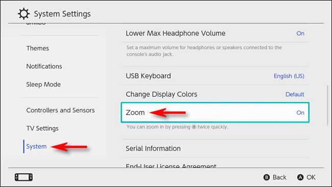 Turn on Zoom in System Settings on Nintendo Switch