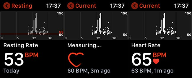 watch heart rate