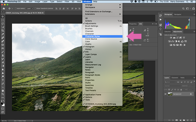 "The ""Window"" menu in Photoshop."
