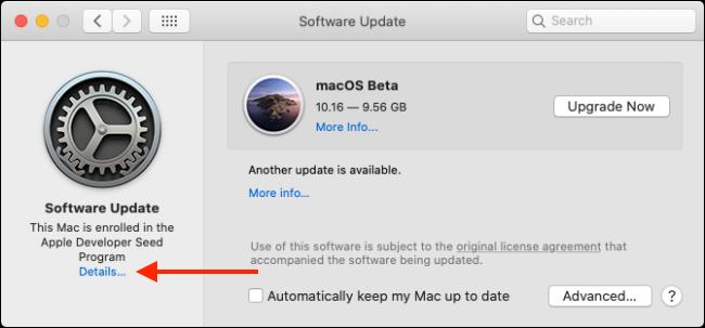 Haga clic en el botón Detalles de Actualización de software