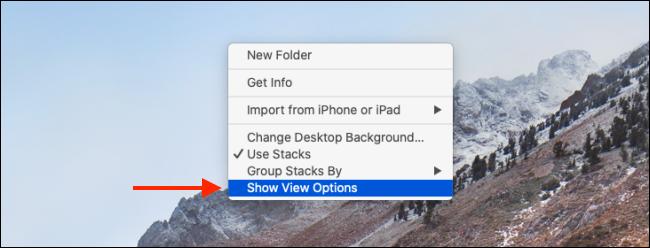 Haga clic en el botón Mostrar opciones de vista