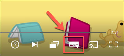 Click the Audio and Subtitles icon.
