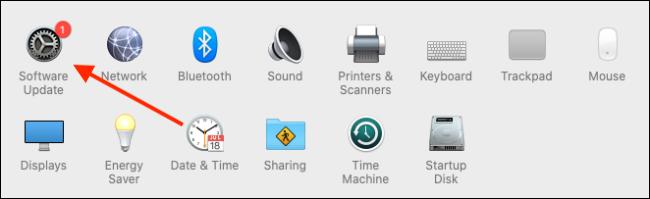Seleccione Actualización de software