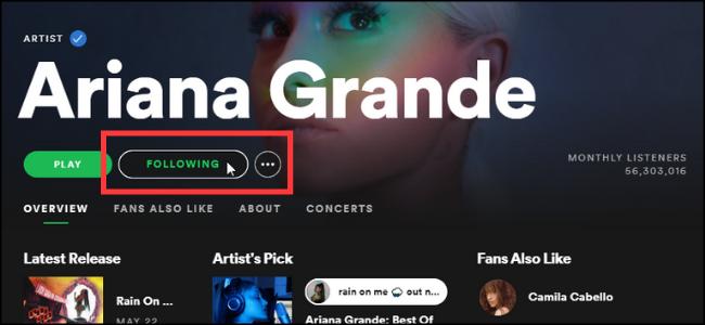 Spotify Save Artist