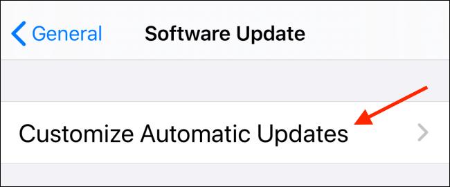 Tap Customize Automatic Updates