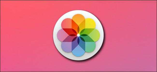 Apple Photos App Hero