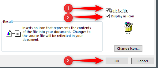 link to file, display icon, and insert pdf options
