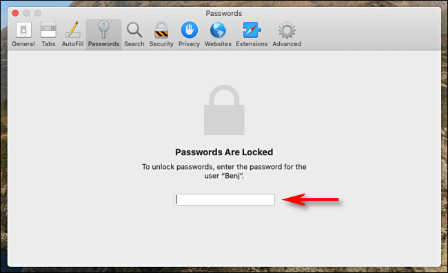 Enter your system password to unlock Safari's stored passwords in Preferences