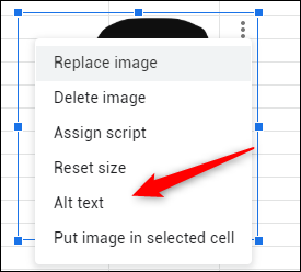 Alt text option in image menu