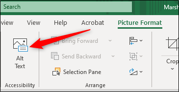 Alt text tab in Excel