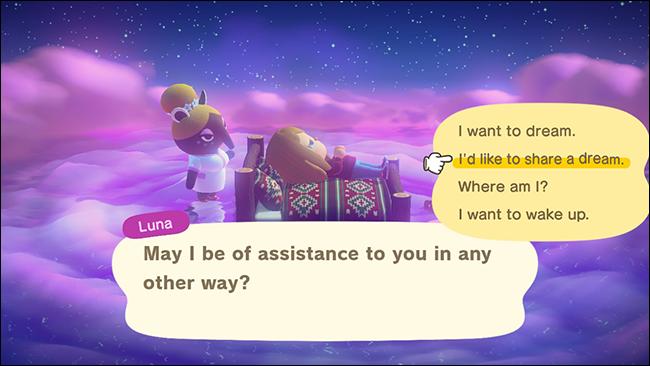 """Select """"I'd like to share a dream."""""""