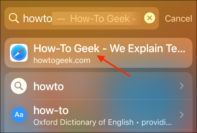 Search Showing Website Autocomplete