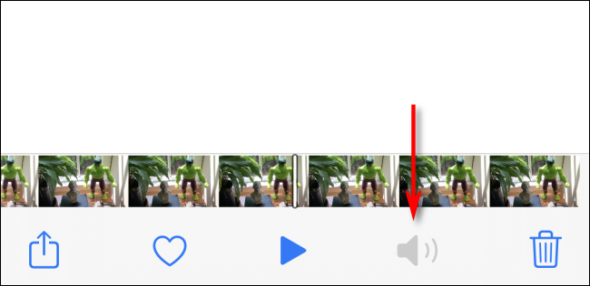 Indication that a video has no audio in Photos on on iPhone or iPad