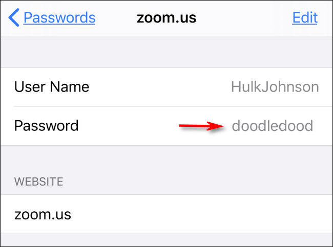 La contraseña de su sitio web revelada en Configuración en iPhone
